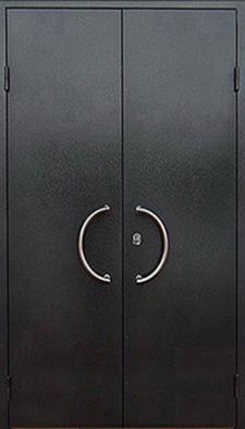 Дверь тамбурная ТА-1838 купить с установкой в Электрогорске