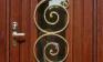 Дверь с ковкой